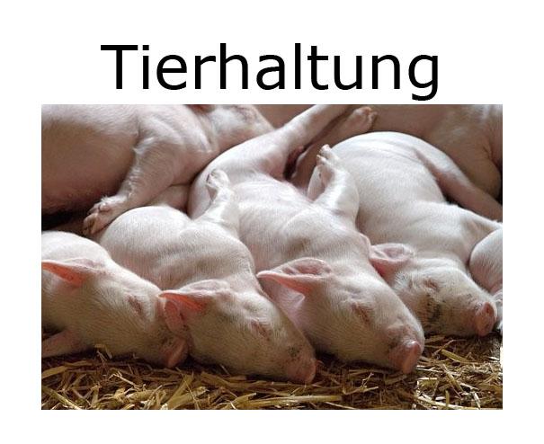 tierhaltung_hover
